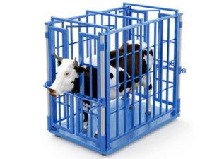 Поверка весов для скота и животных в Москве